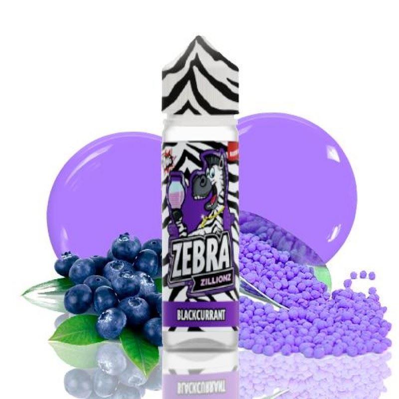Zebra Zillionz Blackcurrant